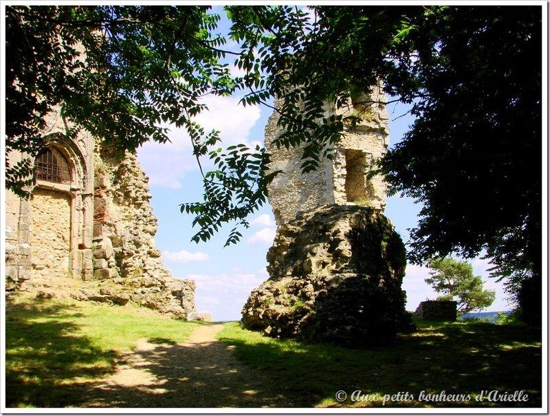 Montfort l'Amaury (4)