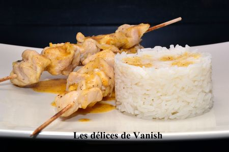 brochette poulet -marinade-citron-4 épices