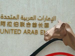 photo du chameau des Emirats Arabes Unis - Shanghai 2010