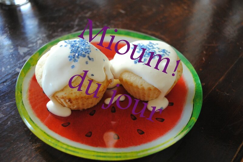 cup cake st jean2
