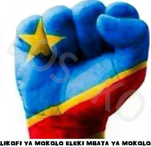 Drapeau RDC