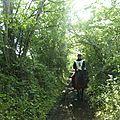 balade à cheval médiévale - Abbaye de Hambye (302)