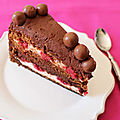 Gateau au chocolat 4 couches ou gateau layer, ganache chocolat nutella, framboises, fluff & malthesers