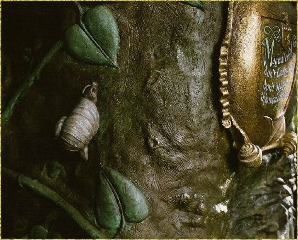 snail and plaque