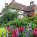 GREAT DIXTER 1