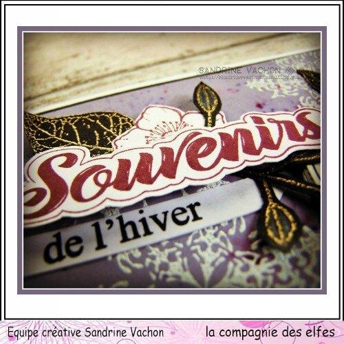 Sandrine VACHON nov 2017 DT LCDE (4)