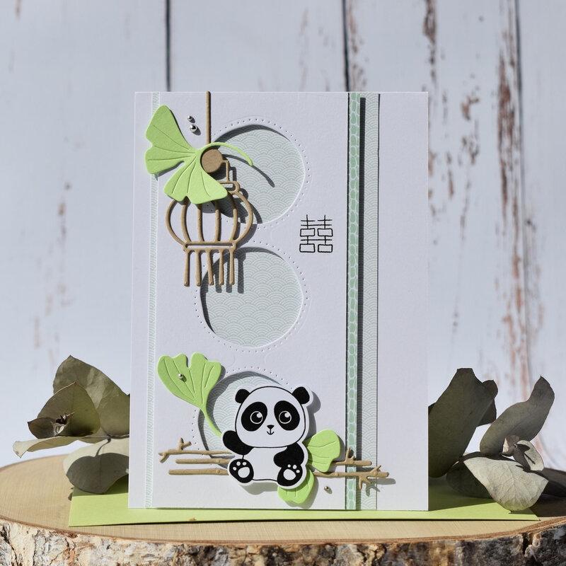 Dani carte little panda P1
