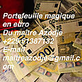 Les méthodes les plus sures et efficaces pour avoir un portefeuille magique rapidement: contactez moi au +22951387132