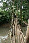 Thailande___Le_Nord_Caca_579