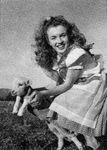 1945_meadow_sitting_sheep_by_dd_031_1