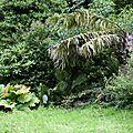 Le parc emmanuel liais à cherbourg le 29 juillet 2016 (4)