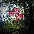 la fleur que j'ai tissé pendant ma maladie yurtao