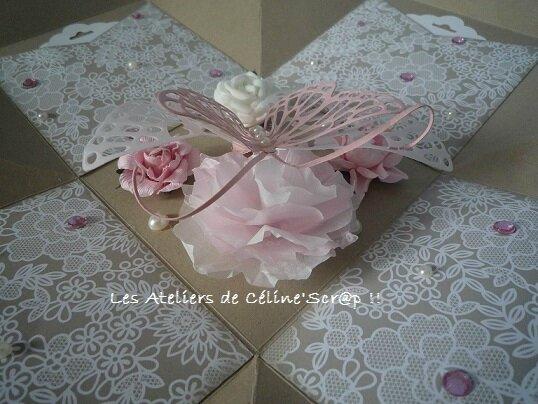 Boîte papillon 8