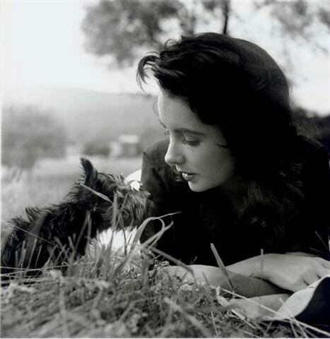 1956-liz_taylor_by_peter_basch-3