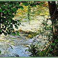 Arros Ricaud 0306159