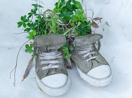 Basket-jardiniere