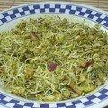 Curry de lentilles germées
