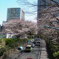 Shinjuku (104)