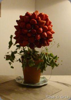 arbre de fraises