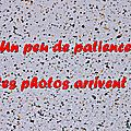 Z-9867 Open de France Handigolf Saint-Omer 17 et 18 mai 2014