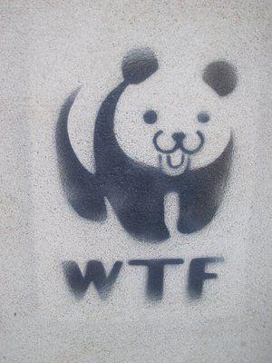 WTF_panda_by_utilizator