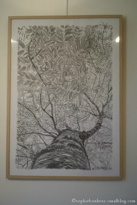 expostion arbres
