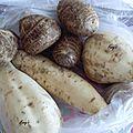 Manioc, taro et patate douce