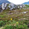 08 07 10 Grøtfjord (24)