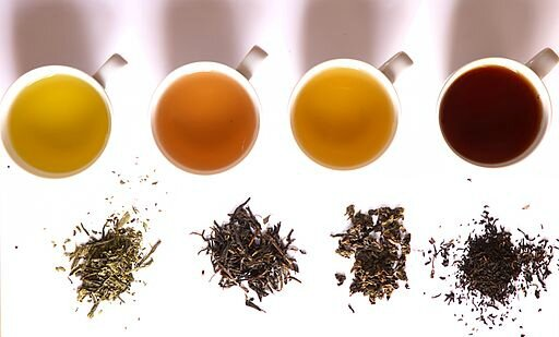 512px-Tea_in_different_grade_of_fermentation