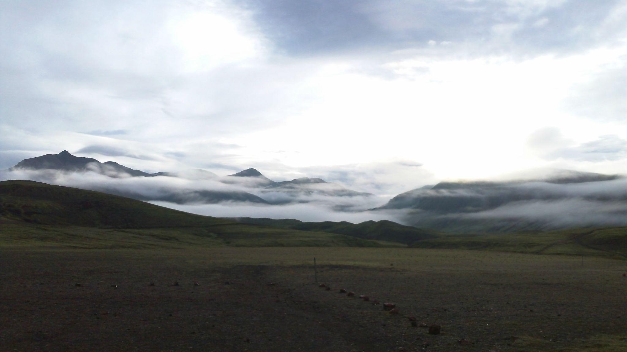 Skogar-Land-138