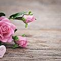Le biscornu aux roses de terlicotonbéa, 33e inscrite