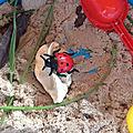 Bac sensoriel insectes