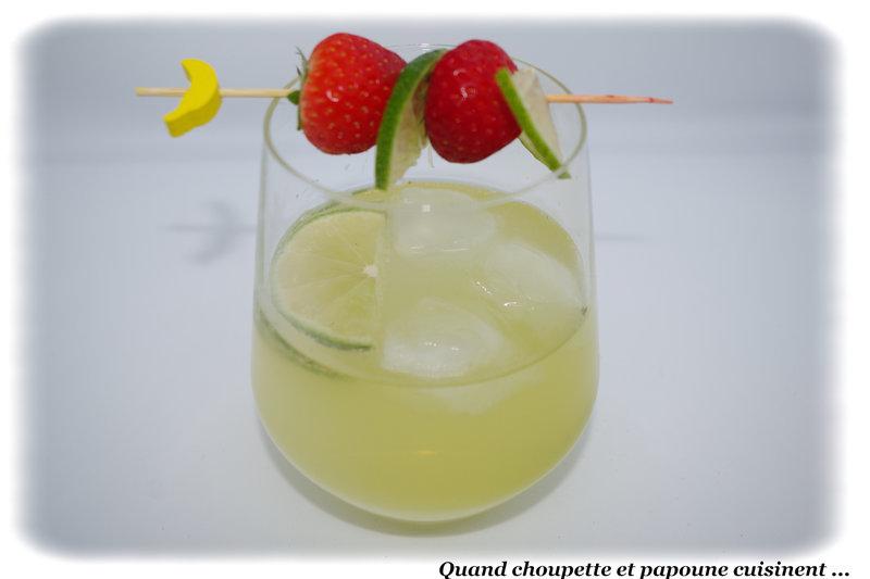 spritz liqueur de citron vert-7473