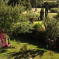 Windows-Live-Writer/jardin_D005/DSCF3978