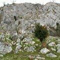 Passage rocher pic Asté