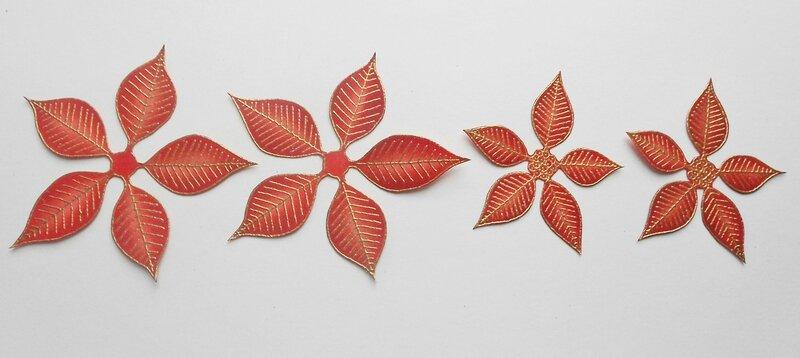Poinsettia (5)