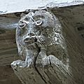 20140721 St Cirq la popie tête de bois