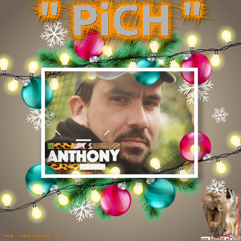 _ANTHONY_2_NOEL_2017