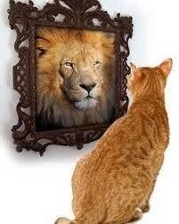 """Résultat de recherche d'images pour """"narcissisme"""""""