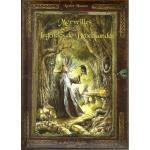 merveilles-et-legendes-de-broceliande-xavier-husson-livre-de-contes-et-legendes-de-bretagne