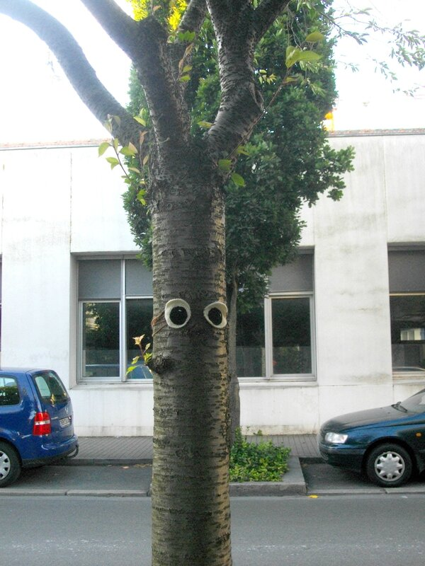eye-bombing-nantes-tricot-graphie