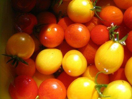 petites_tomates