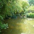 les barques sur l'étang