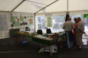 fêtes des trois quartiers Avranches 2012 expo sur les pommes