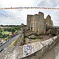 Notice historique sur le château baronnial des évêques de poitiers à chauvigny et les fouilles archéologiques.