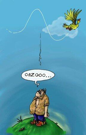 oazoo