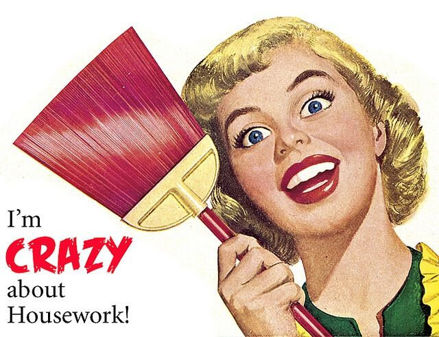 Crazy Housework Pin by Laurie eastman