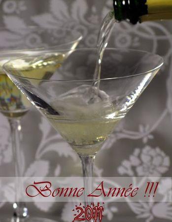 BonneAnnee2009_copie