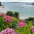 Kervigorn, plage, bateaux et fleurs (29)