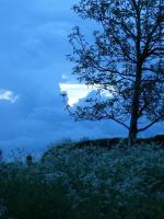 Blog 27-05-16 2